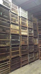 Used 34.5 x 40.5 x 32 Wire Steel Baskets