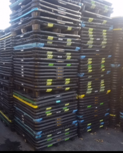 Used 48x40 Thermoform Plastic Pallet